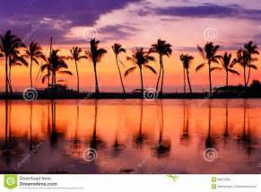 hawaii sunset tropical paradise landscape stock photo image 50915928