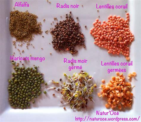 comment cuisiner le cresson kézako les graines germées natur 39 océ