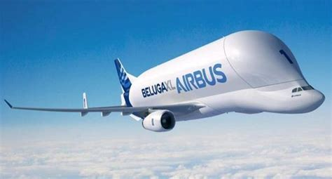 bureau direct beluga l 39 avion capital d 39 airbus 22 03 2017 ladepeche fr