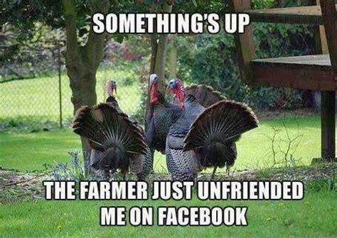 Turkey Day Meme - happy thanksgiving 2013 mostly homemade mom