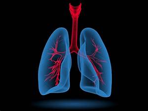 How To Interpret A Diffusion Capacity Of The Lung For
