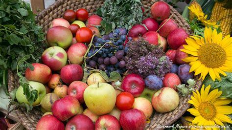 obst saisonkalender steirische spezialitaeten