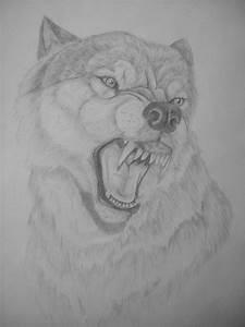 Snarling wolf by punxnotdead309 on DeviantArt
