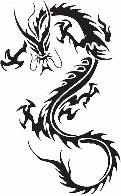 Transparent Dragon Tattoos Freepngimg
