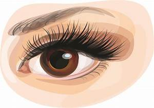 Eye free vector download (676 Free vector) for commercial ...