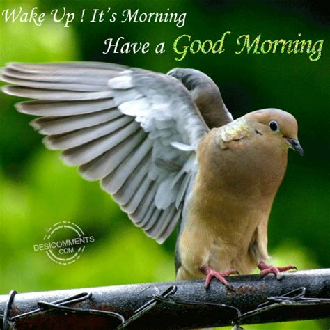 wake uphave  good morning desicommentscom