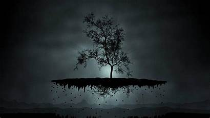 Dark 1080p Wallpapers Tree Digital Fog