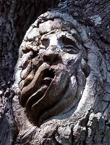 Tree spirit carvings by keith jennings gagdaily news for Tree spirit carvings by keith jennings