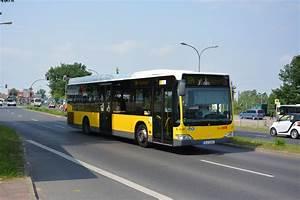 Berlin Ulm Bus : bus betriebe in deutschland fotos ~ Markanthonyermac.com Haus und Dekorationen
