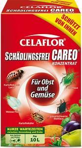 Celaflor Schädlingsfrei Careo Konzentrat : celaflor celaflor sch dlingsfrei careo konzentrat f r obst gem se ~ A.2002-acura-tl-radio.info Haus und Dekorationen