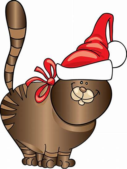 Cat Christmas Clipart Clip Santa Funny Animals