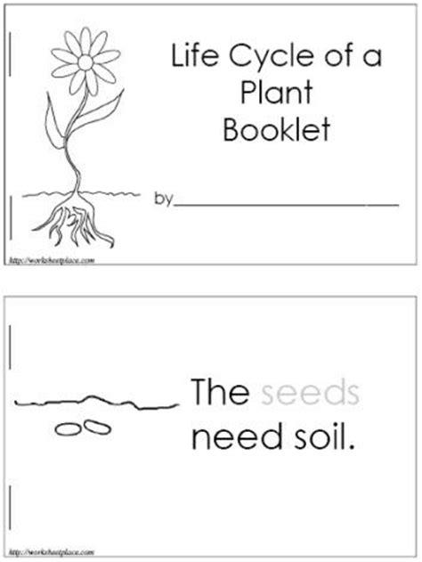 how do plants grow plants kindergarten lessons