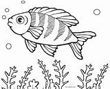 Fish Coloring Pages Printable sketch template