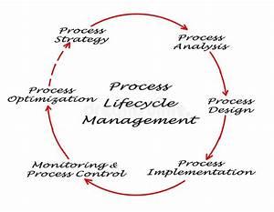 Process Lifecycle Diagram Stock Illustration  Illustration