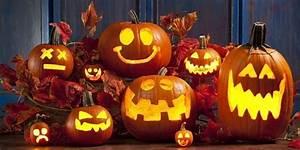 Lakeland, Fall, U0026, Halloween, Guide, Pumpkin, Patches, Corn, Mazes, U0026, More