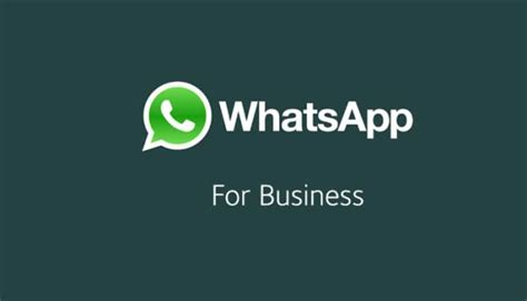 whatsapp business apk 0 0 58 for android