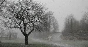 Météo Terre Net : la m t o du mois d 39 octobre a t marqu e par la pluie et la douceur ~ Medecine-chirurgie-esthetiques.com Avis de Voitures
