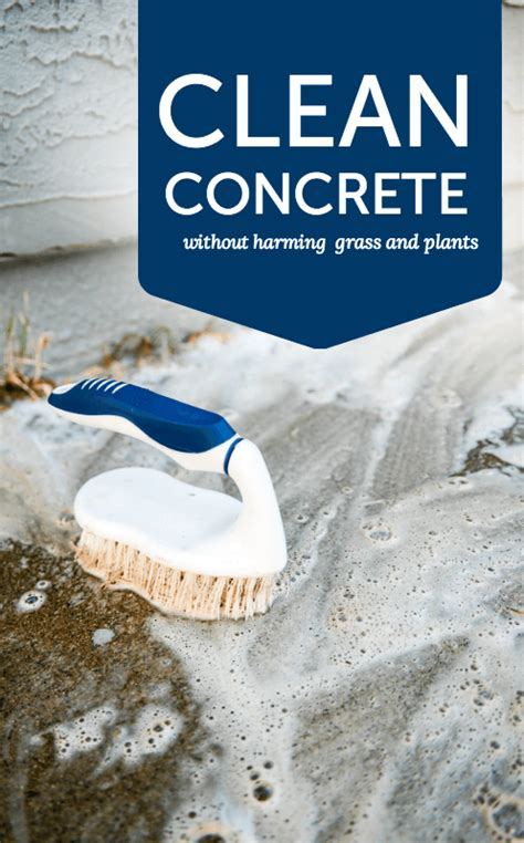 how to deal with concrete near plants someday i ll