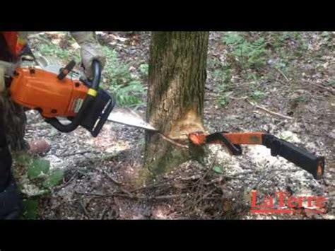 abattre  arbre en le dirigeant dans le sens contraire de