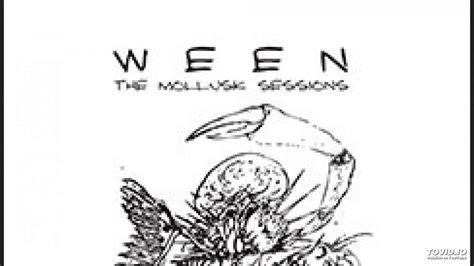 Mollusk Sessions