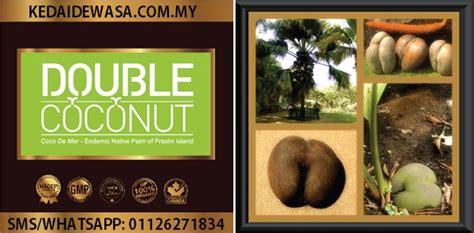 double coconut malaysia ubat kuat lelaki ubat tahan lama
