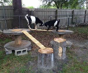 Goat Playground Made From Logs  Wire Spools And Scrap Wood