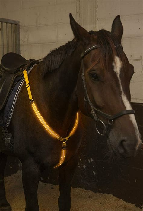 horse viz hi riding tack equestrian collar adjustable gear horseback rechargeable sturdy visibility breastplate comfortable usb safety led visible makes