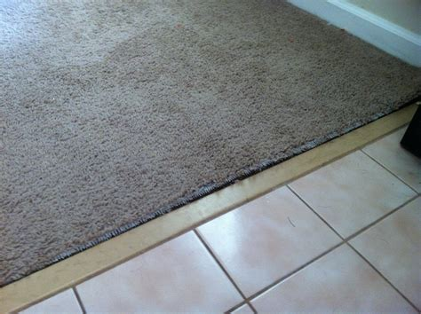 Carpet To Tile Transition Strips by Carpet To Tile Transition Damage