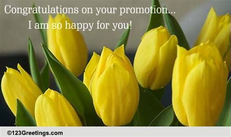 happy    promotion ecards greeting cards