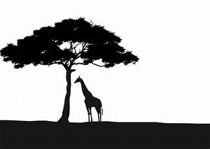 African Giraffe and Acacia Tree Silhouette Wall Art ...