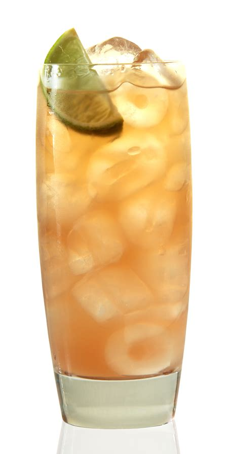 sweet mixed drinks top 10 southern comfort drinks with recipes