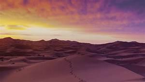 Desert Sand Night | www.imgkid.com - The Image Kid Has It!