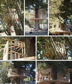High quality treehouse images, illustrations, vectors perfectly priced to fit your project's budget from bigstock. 1000+ images about Kelly & Holly's Treehouse on Pinterest ...
