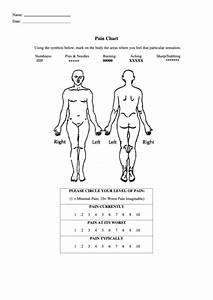Body Pain Chart Printable Pdf Download