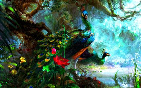 Animated Peacock Wallpapers - brightly peacocks wallpapers brightly peacocks stock photos