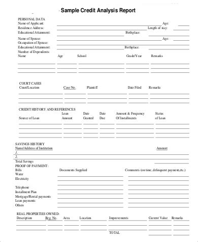 sample credit report  examples   word docs