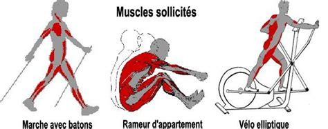 muscles sollicit 233 s en marche avec b 226 tons rameur d appartement et v 233 lo elliptique sant 233