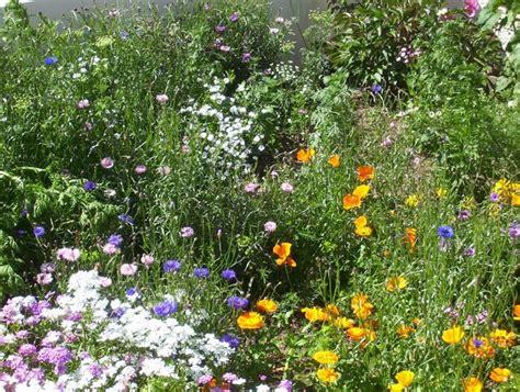 cottage garden flowers country garden design top