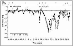 Seasonal Changes In Tree Density Effects On Mesocosm Water Table  Bars