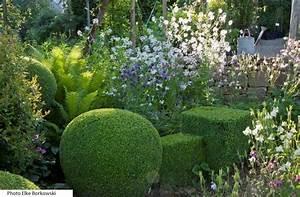 Graminées Vivaces Hautes : plantes vivaces rustiques achat vente et conseil le ~ Premium-room.com Idées de Décoration