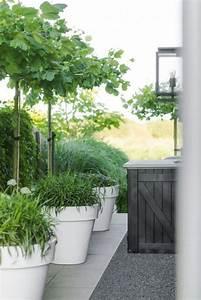Gros Pot Pour Olivier : planters gardening pinterest terrasses jardins et jardini res ~ Melissatoandfro.com Idées de Décoration