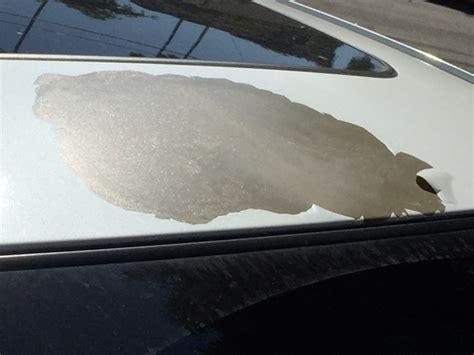 paint peeling roof toyota avalon complaints