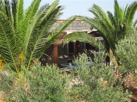 Casa Delle Palme; 5000 Mq Di Giardino, Orto A Disposizione