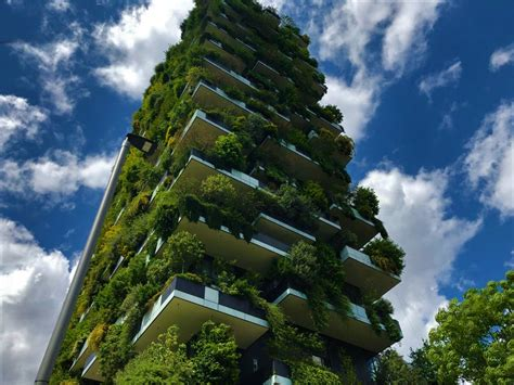 bosco verticale  amazing green towers  shaped