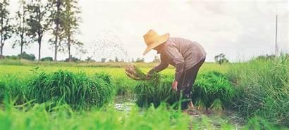 Pertanian Petani Hasil Dan Dalam Contoh Barang