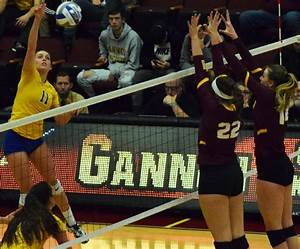 Volleyball earns berth to NCAA Tournament | The Gannon ...
