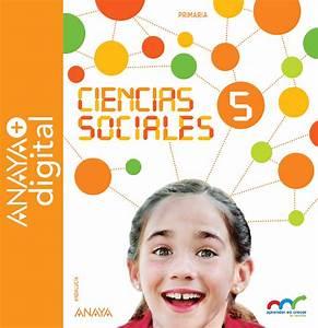 Cuales Son Las Ciencias Sociales - seotoolnet.com