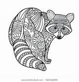 Raccoon Kindergarten Coloring Dianna Awong Vert November Posted Comment Leave sketch template