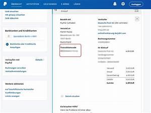 Paypal Zahlung Nicht Möglich : paypal transaktionscode suchen pr fen giga ~ Eleganceandgraceweddings.com Haus und Dekorationen