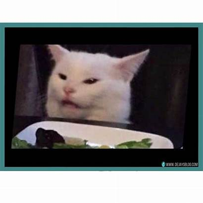 Smudge Cat Memes Face Edition Week November